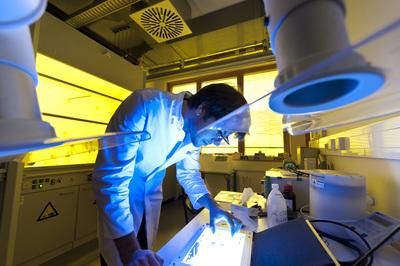 Zentrum für Angewandte Energieforschung 8