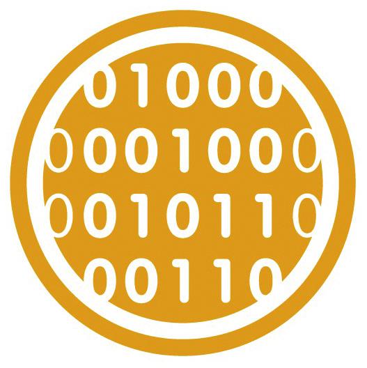 Icon_Kurs 5 Informatik